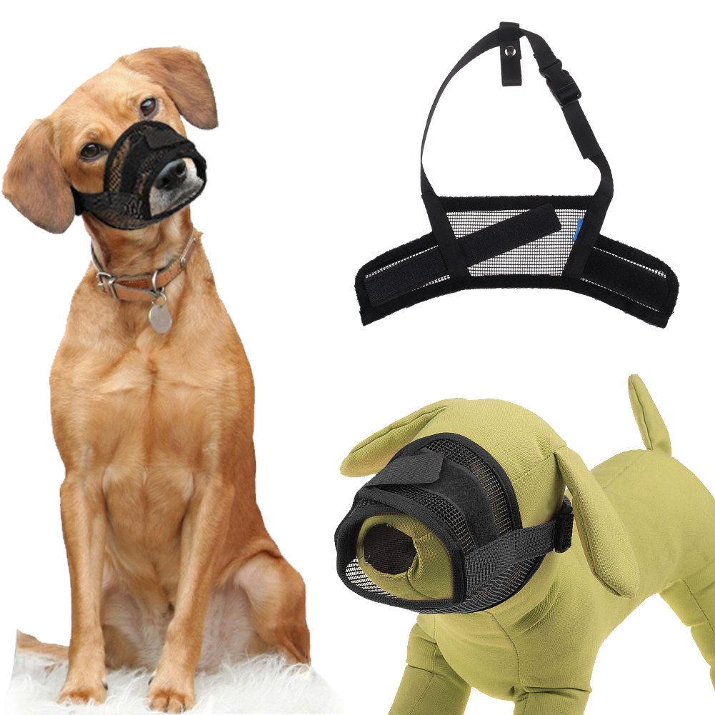 Will A Muzzle Stop Dog From Barking