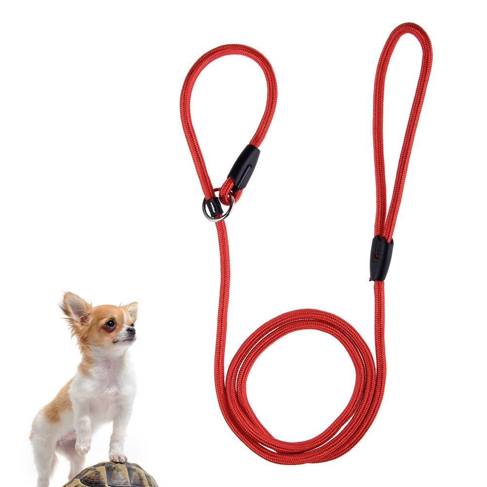 R glable color corde nylon chien glissement marche laisse collier harnais ebay - Laisse corde gros chien ...